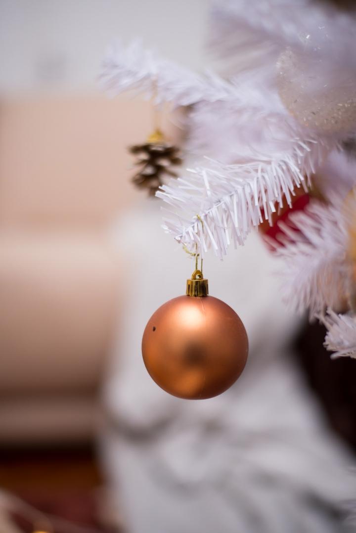 Nadia de Almeida's Christmas Project 2_-42